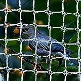 CUIS Bird Netting for Trees, Reusable White Anti Birds Animals Garden Net Plant Protection Square Mesh Netting for Blueberry Poultry Vegetables Fruit Trees (12.5ft×33ft)