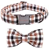 Unique style paws Fall Dog Collar, Puppy Collar with Bowtie, Adjustable Dog Collar Pet Gift for Small Medium Large Dogs