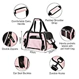 Zoom IMG-1 trasportino cane gatto pet carrier