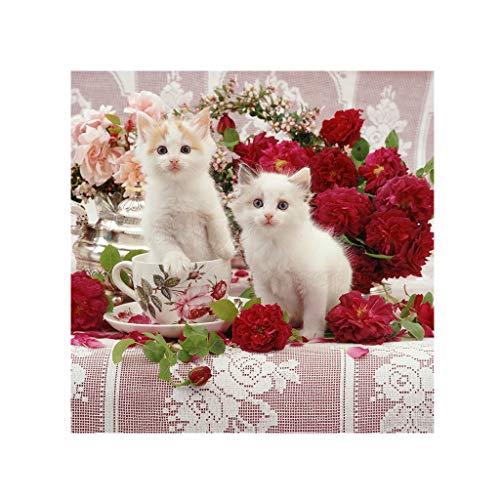 Kit de punto de cruz para adultos DIY 5D cuadrado diamante pintura por número, un par de gatos blancos cristales de estrás bordado de pared arte manualidades lienzo decoración salón 30 x 30 cm