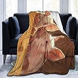 Kuscheldecke Flauschige, Wohndecke für alle Jahreszeiten, Super Weiche Flanell Decke als Sofaüberwurf, Tagesdecke, Wohnzimmerdecke, 200 X 150cm (Süßes Schweinchen)