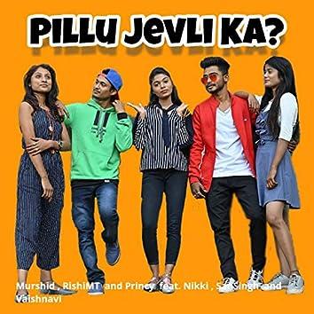 Pillu Jevli Ka (feat. Nikki, Sansingh, Vaishnavi)