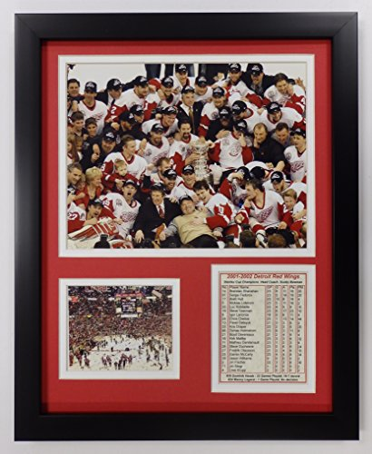 Chris Osgood Detroit Red Wings NHL Double Matted 8x10 Photograph 2008 Stanley Cup Finals Goal Cam