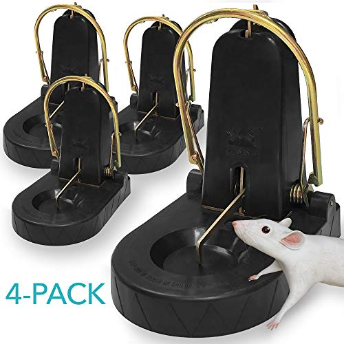 Kat Sense XXL Rat Trap Subway Series - Not All Rodent Traps are Created Equal & This Heavy-Duty Mega Mousetrap Will Prove It - Reusable Pest Control Trap for Rats, Squirrels, Bats, Loads More