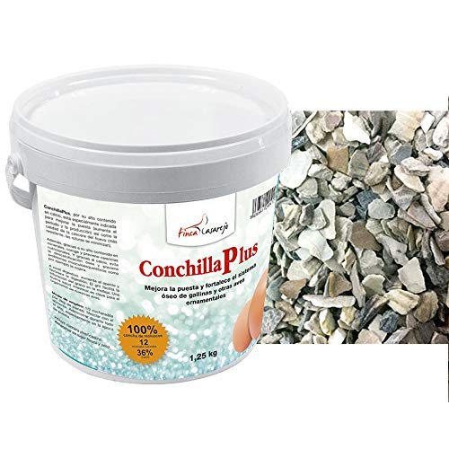 FINCA CASAREJO CONCHILLA Plus - Conchilla de ostra (6)