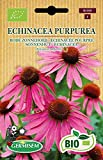 Germisem Biologico Echinacea Purpurea Semi di Echinacea Viola 0.5 g