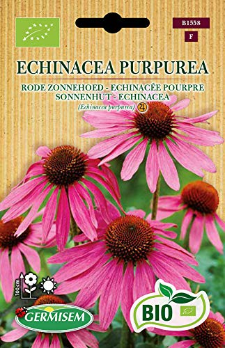 Germisem Organisch Echinacea Purpurea Paarse Zonnehoed Zaden 0.5 g