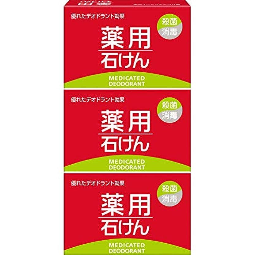 ナインへおいしい台風薬用石けん 100g×3個 (医薬部外品)