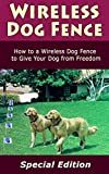 Wireless Dog Fence: How to a Wireless Dog Fence to Give You Dog from Freedom