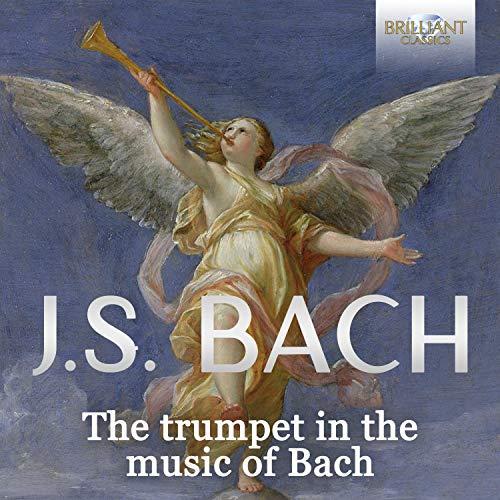 Dem Gerechten muss das Licht immer wieder aufgehen, BWV 195: I. Coro. Dem Gerechten muss das Licht (Soprano, Alto, Tenore, Basso, Coro)