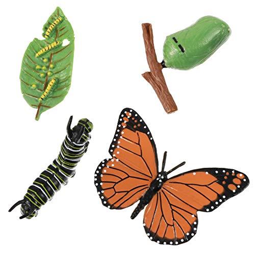 Cabilock 4 Pièces Vie Cycle Ensemble de Papillon en Plastique Insectes Figurines Vie Étapes de Monarque Papillon Enfants Éducatifs Animal Science Jouets