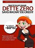 DETTE ZERO : Comment réduire ses dettes rapidement: 5 jours pour installer facilement votre plan d'élimination de crédits: Sans rachat de crédit, sans dossier de surendettement