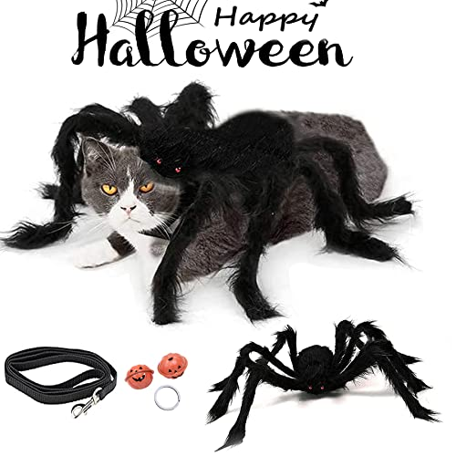 NC kostium dla psa kota pająka