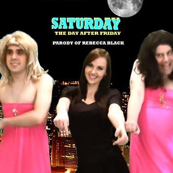 Saturday (Friday By Rebecca Black Parody Song) - Single
