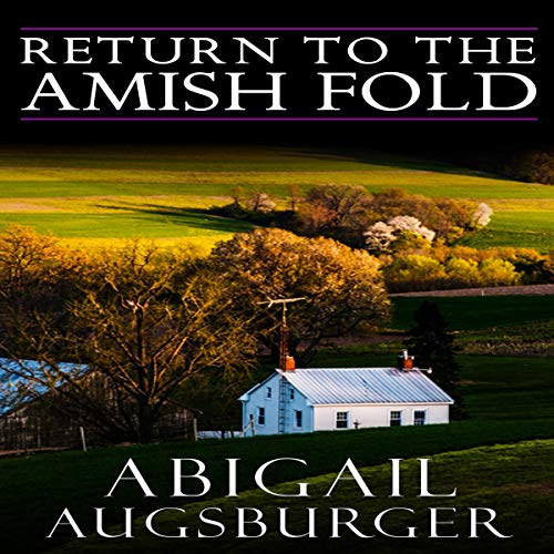 Return to the Amish Fold  By  cover art
