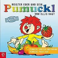Pumuckl 17