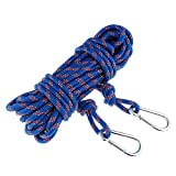 ROSY CLOUDS Safety Rock Climbing Rope, Perfessional Rappelling Auxiliary, Diameter 10mm,100% Quality Assurance New(Blue)