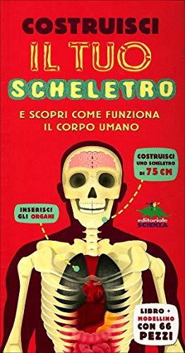 Costruisci il tuo scheletro e scopri come funziona il corpo umano. Con modellino da montare
