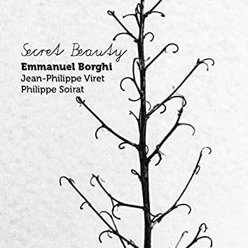 Secret Beauty (feat. Jean-Philippe Viret, Philippe Soirat)