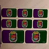 Pegatinas Malaga España Resina, 8 x Pegatinas Relieve 3D Bandera Malaga España Adhesivo Vinilo