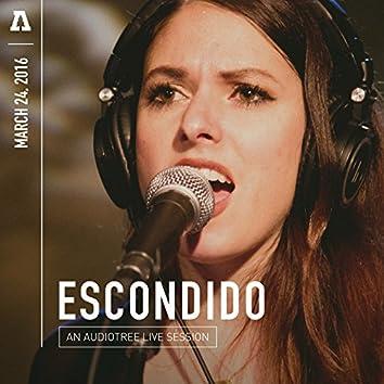 Escondido on Audiotree Live