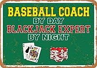 2個 20 * 30 CMメタルサイン-昼は野球コーチ、夜はブラックジャックエキスパート メタルプレート レトロ アメリカン ブリキ 看板