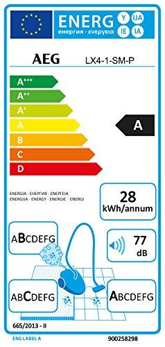 AEG LX4 Efficiency
