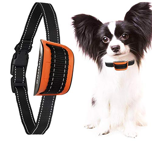 MASBRILL Small Dog Bark Collar, Harmless Stop Barking Device, Control Bark by Beep Sound and Vibration, No Shock. Best Anti-Bark Training Collar. (Orange(5-55lbs))