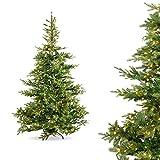 Generisch Künstlicher Weihnachtsbaum mit Beleuchtung | Premium Weihnachtsbaum mit LED Beleuchtung 180 cm| Hohe Qualität für naturgetreues Aussehen