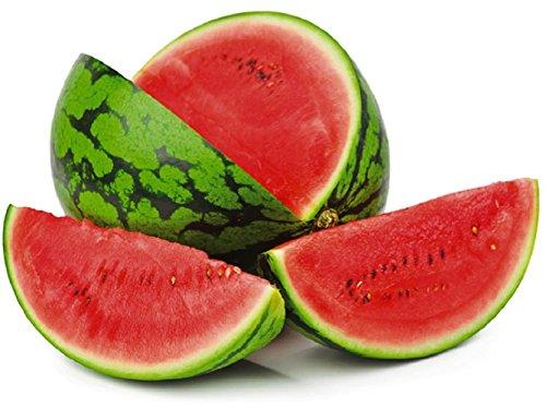 graines semences fruits melon d'eau pasteque comestible fruit /legume/ potager