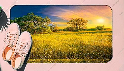 DIIRCYB Fu?Matte Indoor Outdoor rutschfeste waschbare Fu?Matte,Oak Trees and Mustard Plants,DIY Cropping Teppich,F¨¹r Hauptk¨¹Che Schlafzimmer Badezimmerboden Carpet19.5' X 30.5'