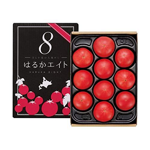 フルーツトマト 高糖度 北海道産 生トマト 8から10玉 1箱 高糖度 トマト はるかエイト 冷蔵便発送