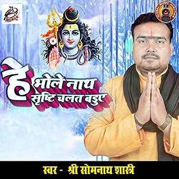 He Bhole Nath Shristi Chalat Baduye - Single