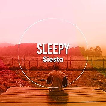 # Sleepy Siesta