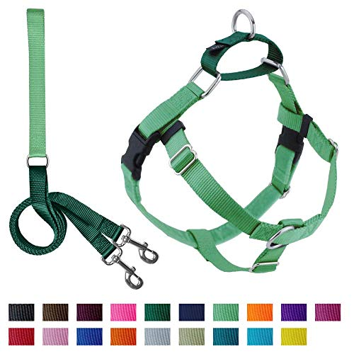 2 Hounds Design Freedom No-Pull Dog Harness with Leash, Large, 1-Inch Wide, Neon Green