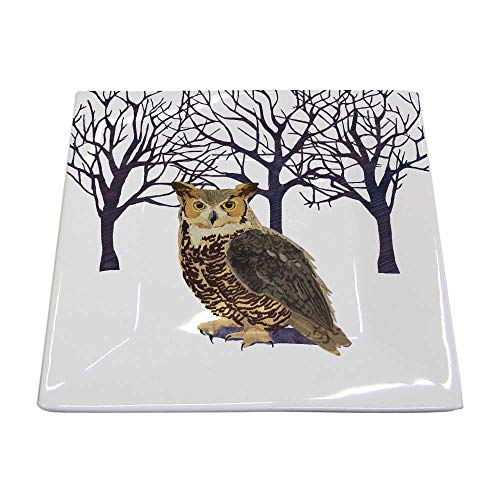 Paperproducts Design Decorative New Bone China 5.75' Square Plate - Dessert, Salad and serving – Artistic Designs, New Bone China Plate – 5.75' Square, Patti Gay/Two Can Art, Winter Owl Design