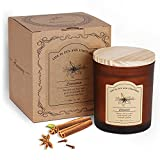 Homemory Cinnamon Scented Candles for Home,Made with Essential Oils, Pure Soy Wax, Aromatherapy Candle for Bedroom, Sleep Aid, Fall Premium Fragrance Candle to Relieve Mood, 9.2oz 65 Hours Burn