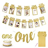 1st Birthday Baby Photo Banner for Newborn to 12 Months, with High Chair Banner, Monthly Milestone Photograph Bunting Garland First Birthday Celebration Decoration