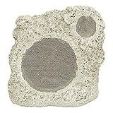 Niles RS5 Coral Pro Weatherproof Rock Loudspeakers