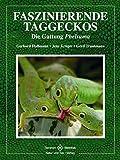 Faszinierende Taggeckos: Die Gattung Phelsuma (Terrarien-Bibliothek)