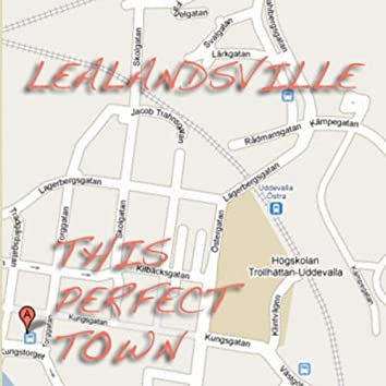 This Perfect Town