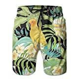 Tropical Flower Parakeet Mens Swim Trunks Beach Shorts with Mesh Lining Boardshort White