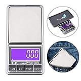Ewolee Digital Pocket Scale - 500g x 0.01g Smart Jewelry Scale, USB Charging
