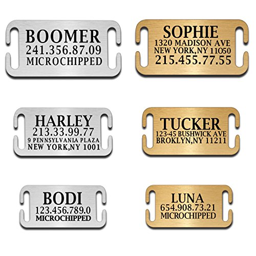 Memories Coding Custom Dog Tags Pet Id Tags for Small/Large Breed Dog Name Engraved Plates Double Sides Engraved- Stainless Steel Silver, Gold (Steel-Silver, Slide-On)