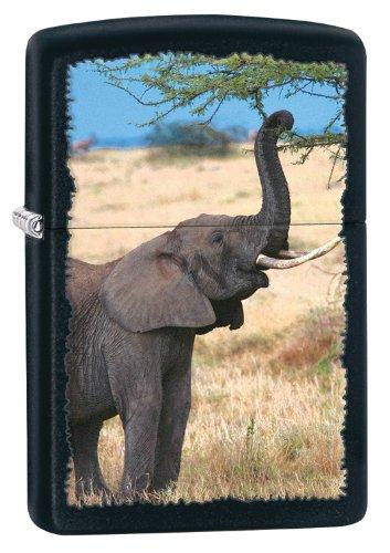 Zippo - Accendino Elefante, Colore Nero