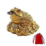 WYMAODAN Moneda de la suerte, Feng Shui sapo moneda de la suerte, amuleto chino para la prosperidad, decoración del hogar, regalo con una bolsa de la suerte