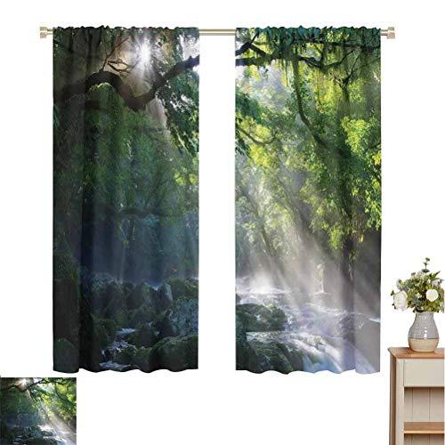 Toopeek - Cortina de colores resistente al desgaste con piedras de la selva, bajo las sombras de los árboles, luz del sol, madre tierra, juego de 2 paneles de 84 x 200 cm, color verde y blanco