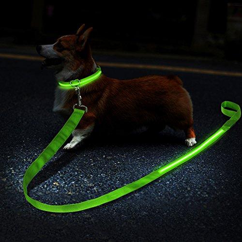 ZEWOO Collare LED per Cani + Cavo del Cane LED,Collare LED per Cani con USB Collare Ricaricabile Glow Sicurezza Luminoso per Cani - Grande visibilità e Sicurezza migliorata(Verde)(Piccolo)