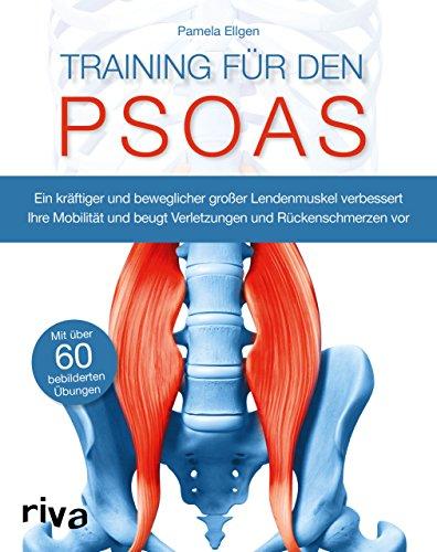 Training für den Psoas: Ein kräftiger und beweglicher großer Lendenmuskel verbessert Ihre Mobilität und beugt Verletzungen und Rückenschmerzen vor