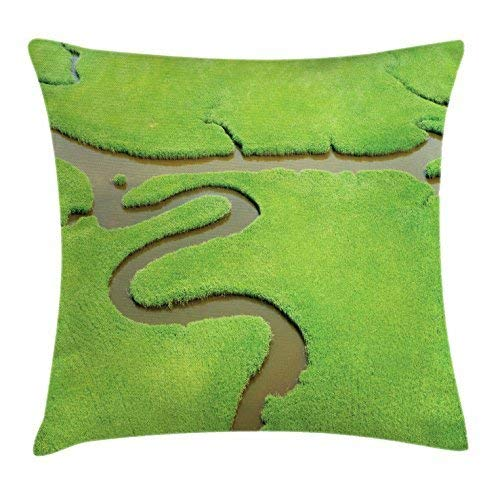 But why miss River Throw Pillow Cushion Cover, Aerial View of Wetlands Lush Green Coastal Scenery Water Bend Through Marsh, Decorative Square Accent Pillow Case, 18 X 18 Inches, Apple Green Cocoa
